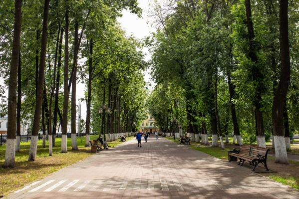 Новая экологическая политика призывает системно подходить к проблемам охраны окружающей среды в Ярославле