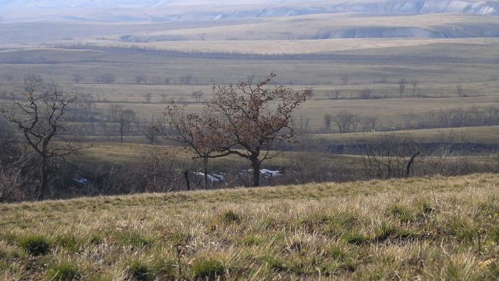 Природные парки Волгоградской области закрыли для массовых посещений