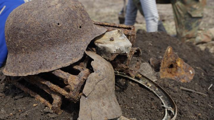 В Ростове рассекретили десятки могил людей, убитых нацистами. Данные предоставила ФСБ