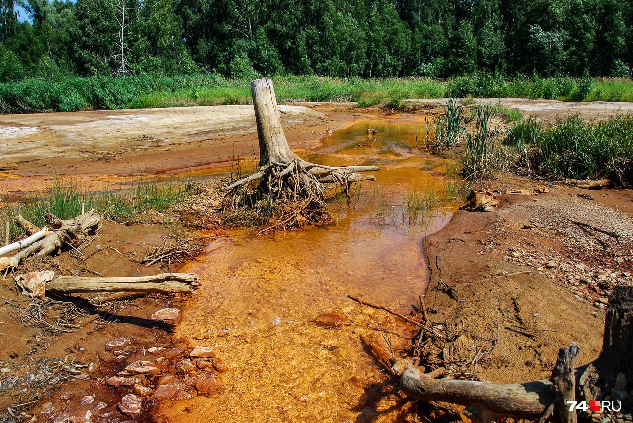 Сак-Элга после пруда: рыжина присутствует, но цвет слабее, а вода прозрачнее. Наш дизайнер Дмитрий Гладышев сказал: до пруда — сок с мякотью, после пруда — осветлённый