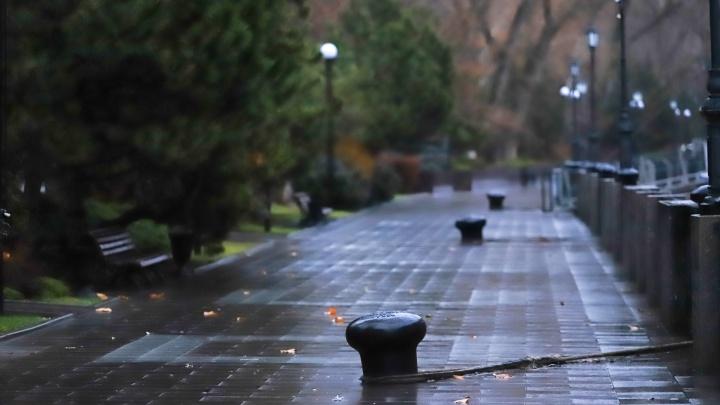 Время гулять под дождем: какой будет погода в Ростове в выходные
