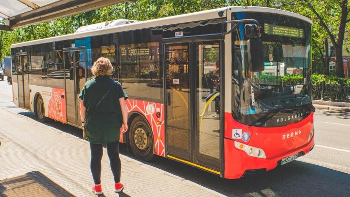 «Информативная, хорошо читается»: глава Перми оценил транспортную схему, которую предложили общественники