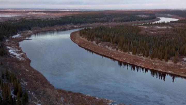 На место разлива нефтепродуктов на реке Колве вылетел губернатор НАО Юрий Бездудный