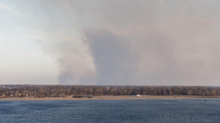 «Порывы ветра осложняют тушение»: напротив Волгограда разгорелся крупный пожар