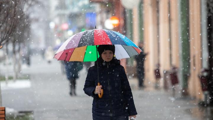 Мокрый снег и ветер: в Ростовской области резко ухудшится погода
