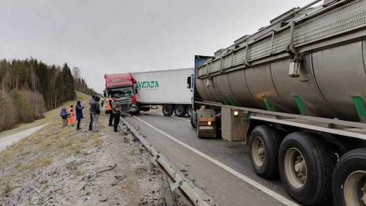 На трассе в Холмогорском районе столкнулись три грузовика и две легковушки