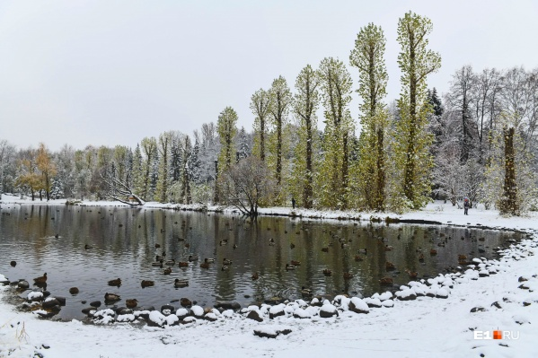 Метелей пока ждать не стоит, но зима уже близко