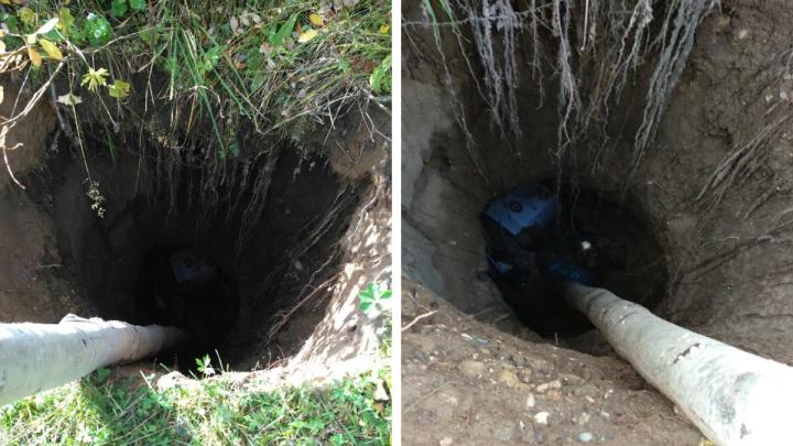 Жители Холмогорского района пожаловались на ямы в земле. Возможно, это карстовые воронки