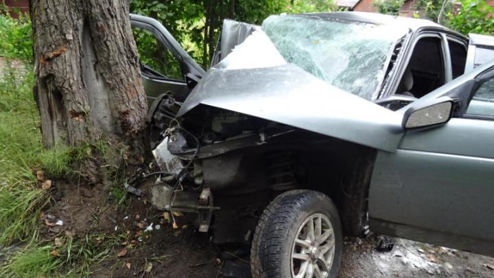 В Архангельске автомобиль врезался в дерево — его водитель был пьян и без прав