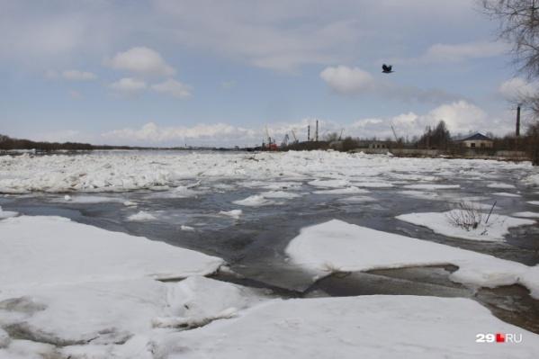 Из-за больших льдин в этом году в русле Северной Двины может понадобиться помощь ледокола