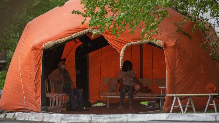 Под окнами инфекционки поставили палатки медицины катастроф — рассказываем, для чего