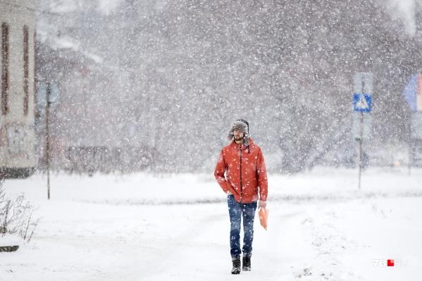 Синоптики прогнозируют, что в Ярославле 23 февраля будет снегопад