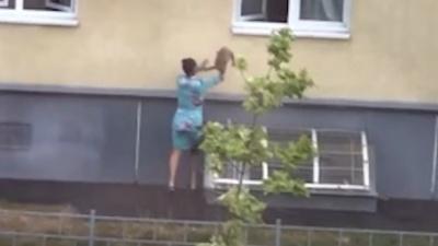 Котопультинг: видео про то, как нижегородка необычно возвращала убежавшего кота