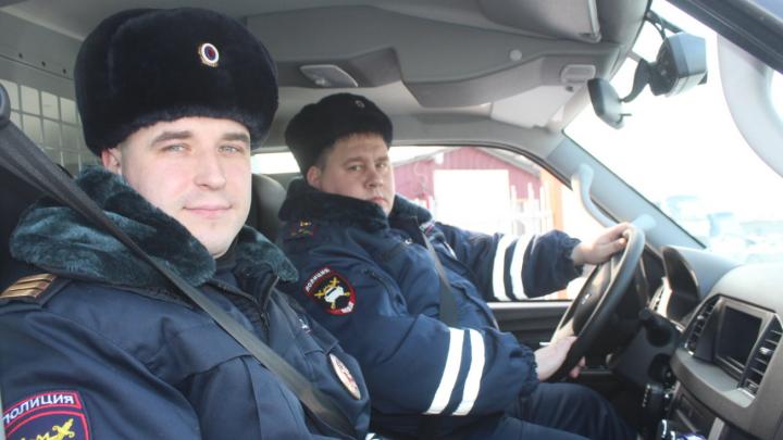 Красноярские полицейские остановили движение на трассе ради спасения мечущейся косули