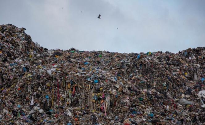 В Новосибирске прошли аукционы по вывозу мусора на 11миллиардов. Кто будет зарабатывать на росте тарифа