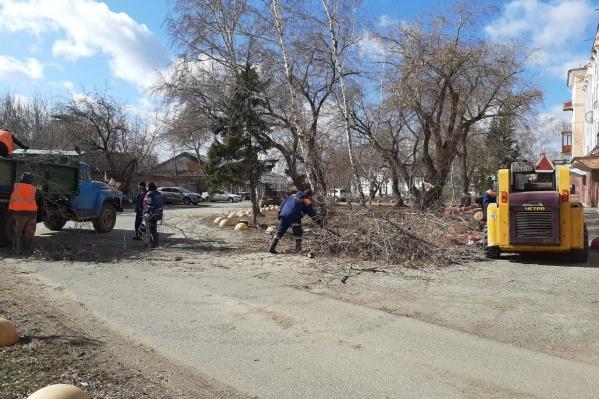 Дорожные рабочие распиливали упавшие деревья и вывозили их на грузовиках