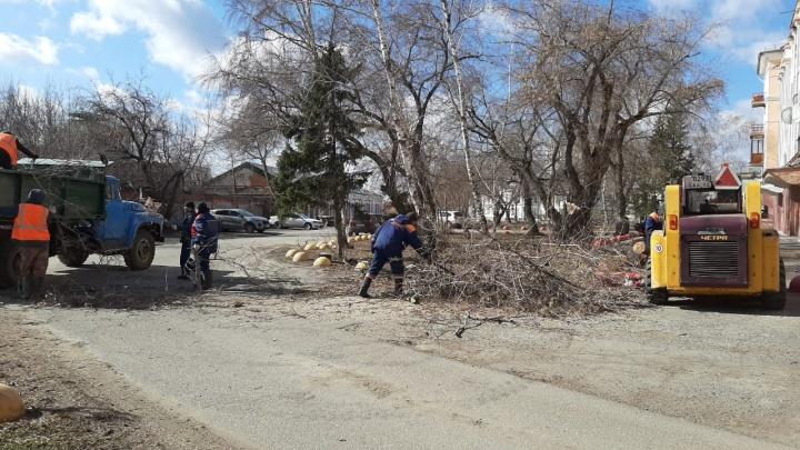 1200 домов без электричества и 43 упавших дерева: итоги урагана на одной картинке