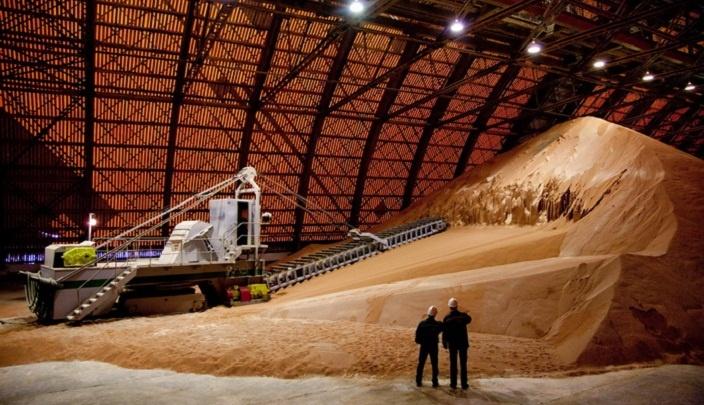 Представители «Уралкалия» рассказали в Индии про эффективное применение минеральных удобрений
