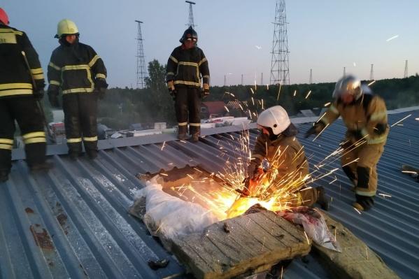 Площадь пожара составляет 800 квадратных метров