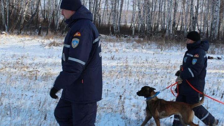 80-летнего лыжника, пропавшего в горах в Челябинской области, нашли мертвым