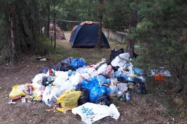 Чемской бор превратился в кучу мусора вперемешку с людьми, палатками, машинами и гоп-какофонией из десятков колонок