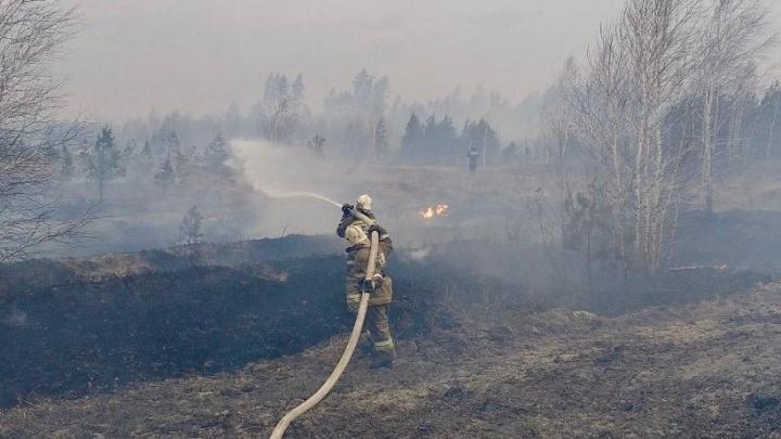 Пожарные справились с крупным возгоранием в лесу в Кетовском районе