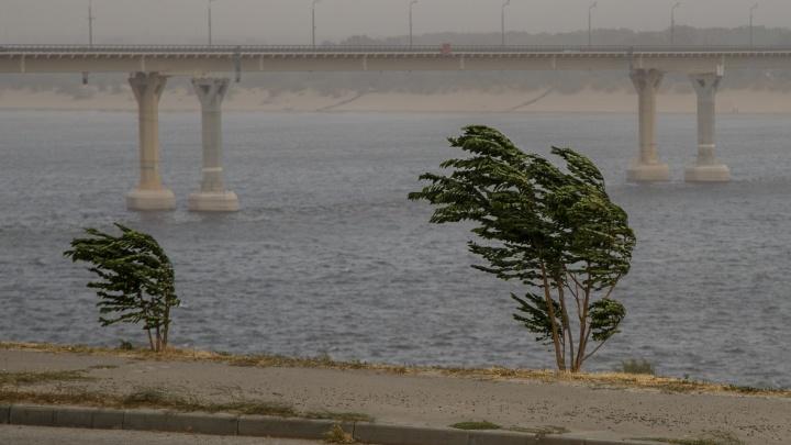 В Волгоградскую область сильный ветер несёт грозовые дожди при жаре +35 ºС
