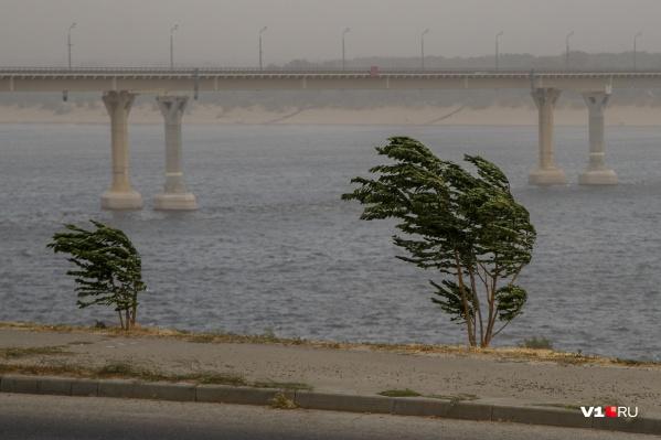 Непогода застанет врасплох жителей севера области