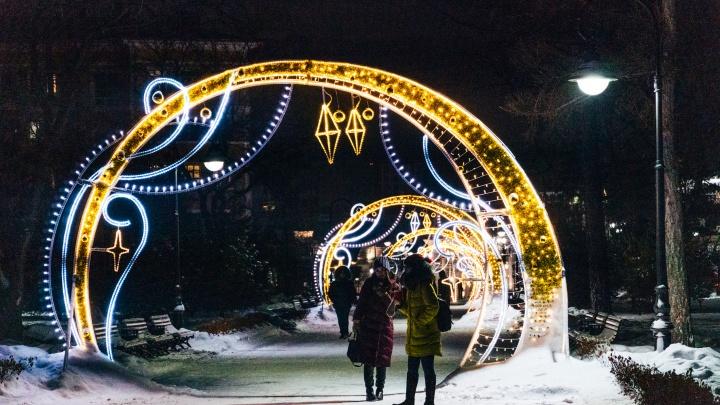От зимней «Флоры» до елки с бантом: в центре города откроют новогодний маршрут