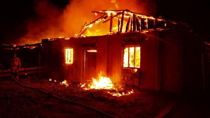 В Свердловской области во время крупного пожара погибли животные