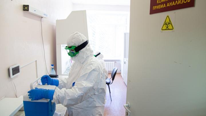 Оперштаб региона уточнил информацию по коронавирусу в Каргополе