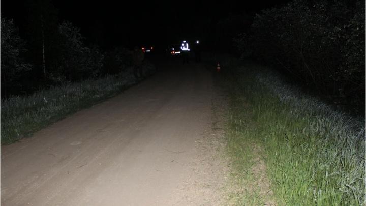 В Новосибирской области мотоцикл слетел в кювет и врезался в дерево — погиб один человек