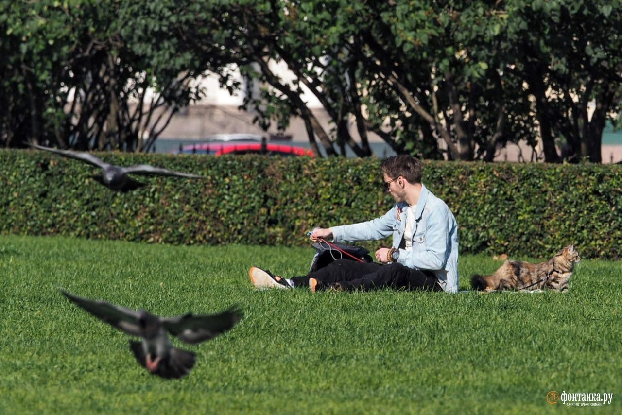 Осень 2020 для многих горожан запомнилась как одна из самых теплых и солнечных