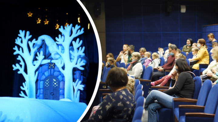 Декорации, антисептик и грустный поросёнок: как выглядит Архангельский театр кукол во время пандемии