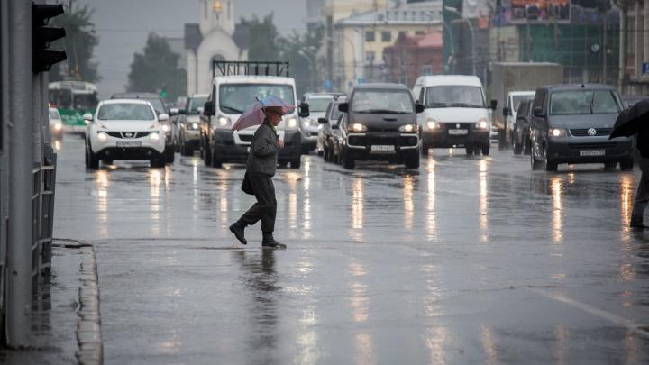 Зальет дождями, потом потеплеет: изучаем прогноз погоды в Новосибирске на выходные