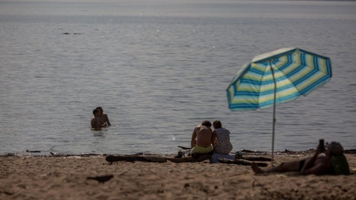 Может, будет +35 градусов. Изучаем прогноз погоды в Новосибирске на июль