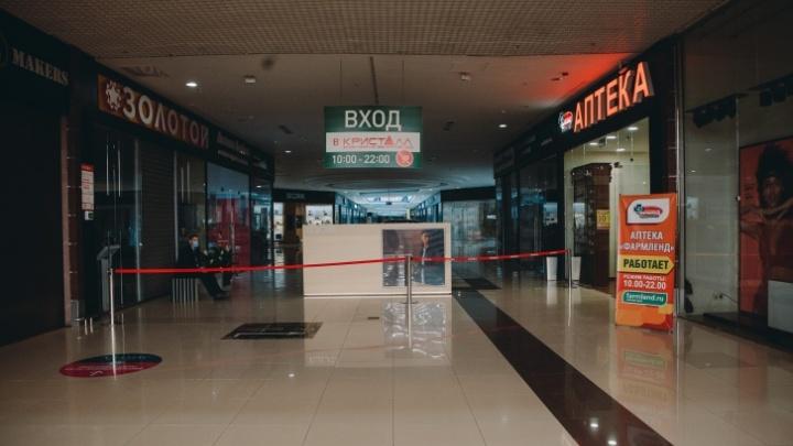 Бизнес терпит бедствие: тюменские предприятия рассказали об убытках, долгах и отсутствии денег