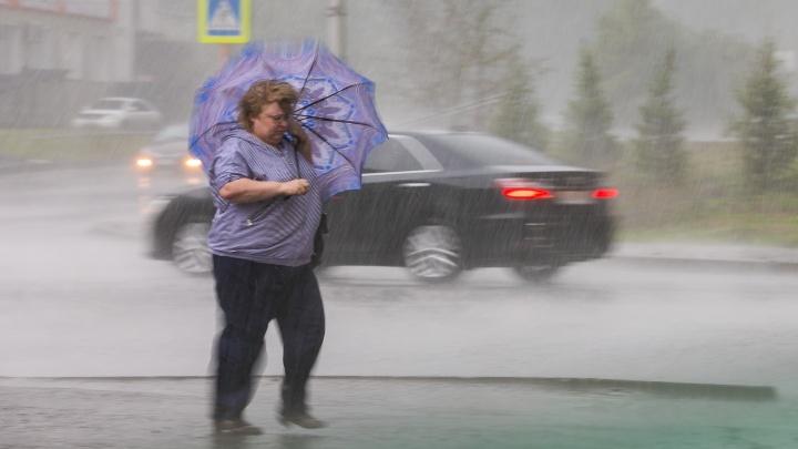 После 30-градусной жары в конце недели в Красноярск придет штормовой ветер