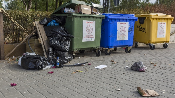 «Не рассортируете помойное ведро — заварим мусоропровод»: в Волгограде внедряют раздельный сбор мусора