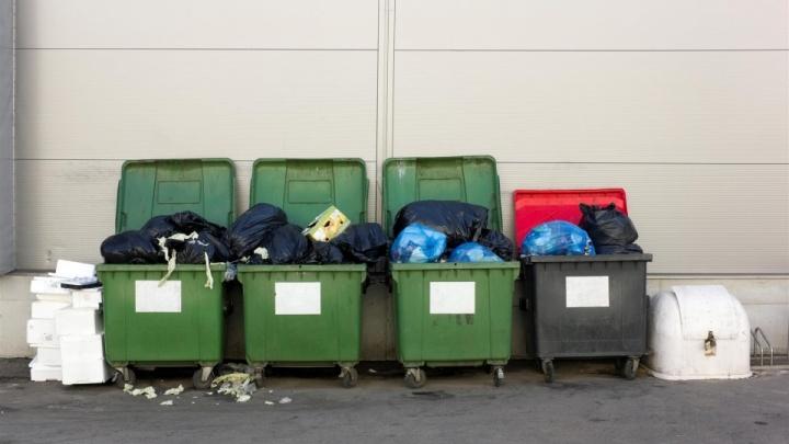 Регоператор ГК «Чистый город» взял вывоз мусора в нерабочую неделю на особый контроль