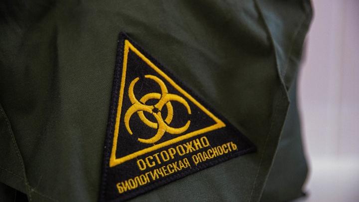 Власти Кузбасса просят компании перевести своих сотрудников на удаленку