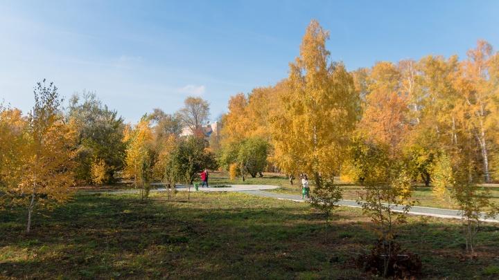 В Самарской области ожидаются тёплые выходные