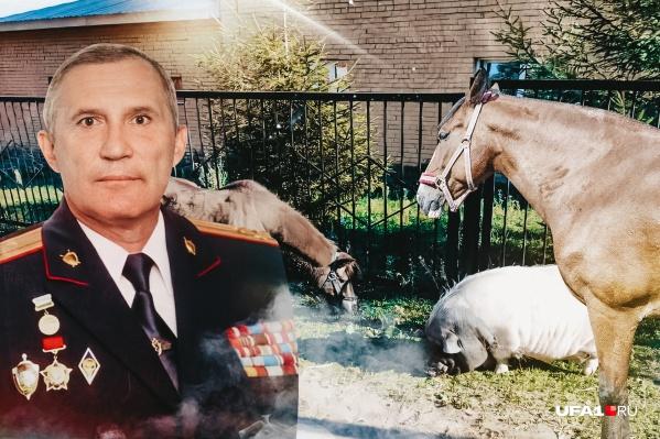 На счету у полковника Гурьева десяток спасенных лошадок и пони