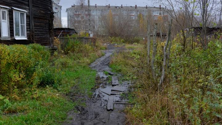 Глава Архангельска рассказал о разработке предприятия, которое займется благоустройством территорий