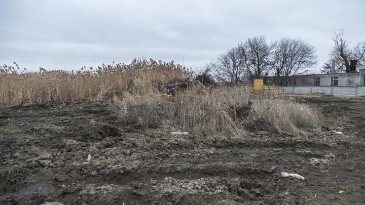 В Волгограде братская могила жертв белого террора превратилась в свалку