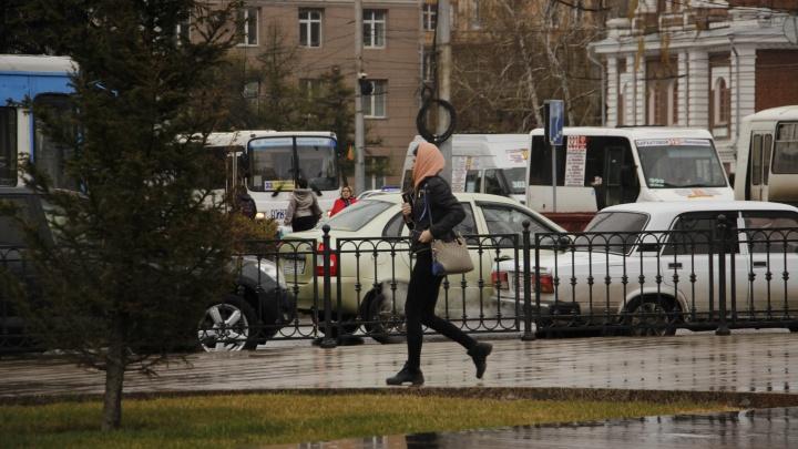 Начало рабочей недели в Омске будет тёплым, но дождливым