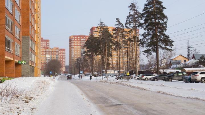 Прокуратура предложила спасти городские леса Новосибирска возле биатлонного комплекса и в Советском районе