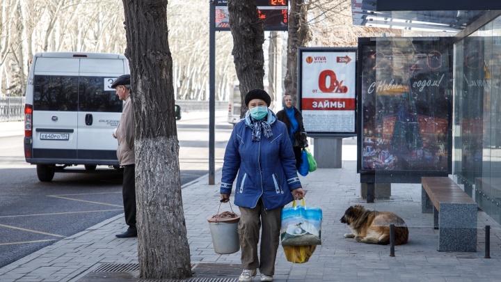 В Волгограде в начале недели рухнул индекс самоизоляции