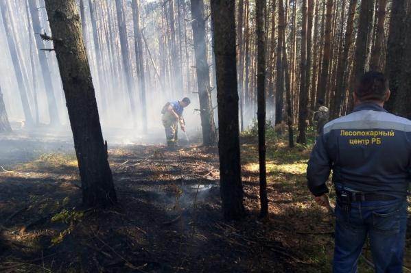 Сотрудники тушат пожары круглые сутки