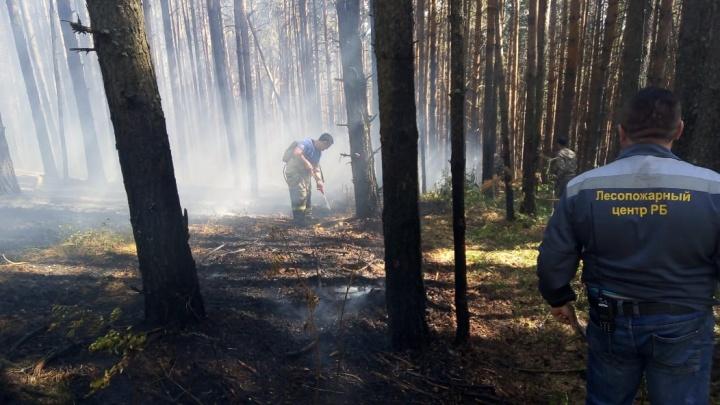 В Башкирии до сих пор не потушили лесные пожары в Белорецком районе